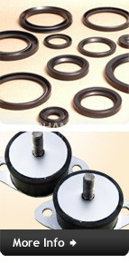 Oil Seals & Rubber to metal bonded